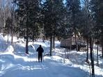 Skieur sur Les Sentier du lac