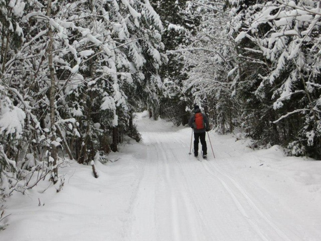 Centre plein air Cabano : cross-country skiing
